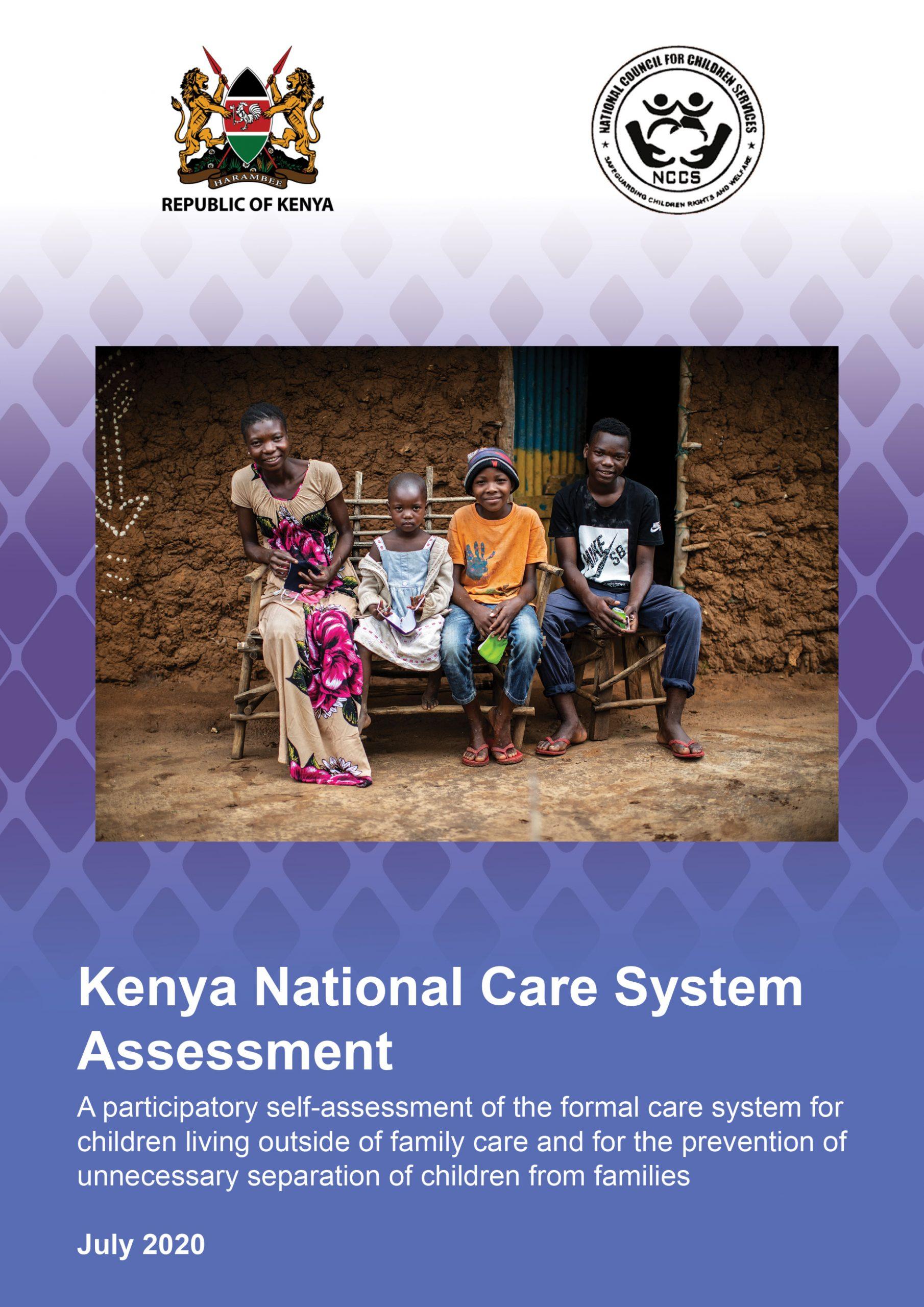 Kenya National Care System Assessment